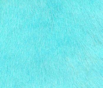 turquoise cavallino hair on hyde